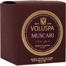 Voluspa Muscari